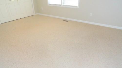Light Carpet cleaned by Heaven's Best